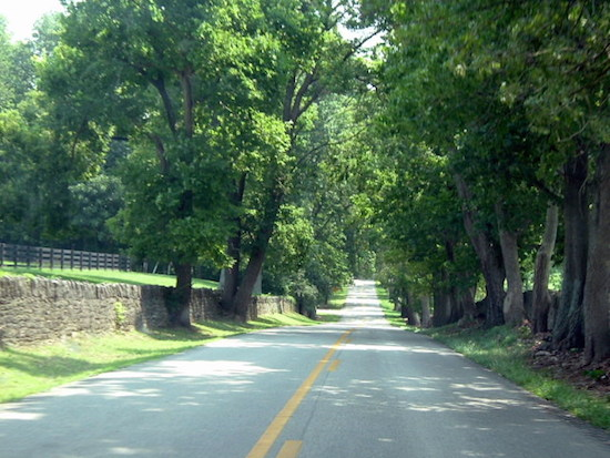 Country_road_in_Kentucky